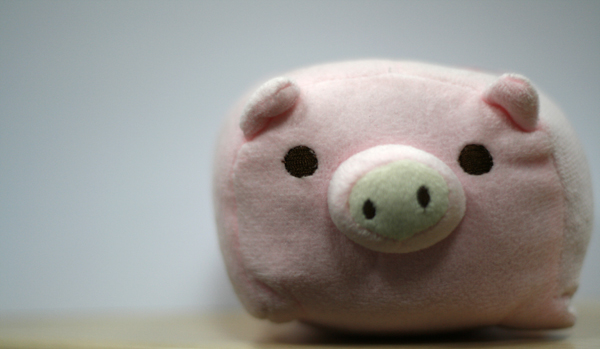 Pink Pig - Exposure Compensation +1.3 step