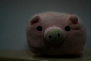 Pink Pig - Exposure Compensatio 0 step